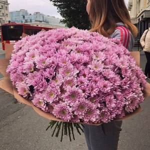Букет 51 ветка розовой хризантемы в крафте R1120