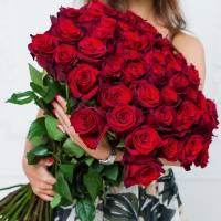 Букет 51 крупная красная роза с лентами R006